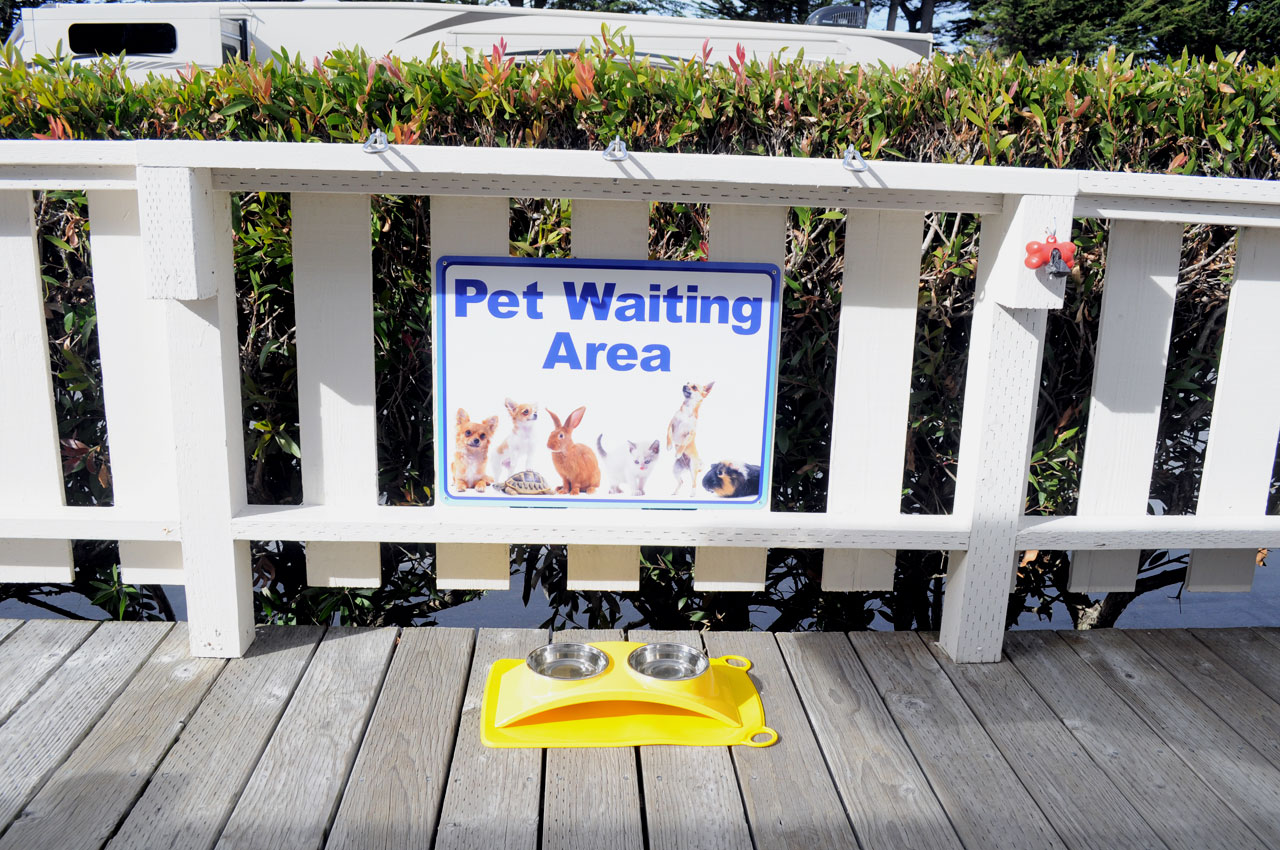Pet Waiting Area